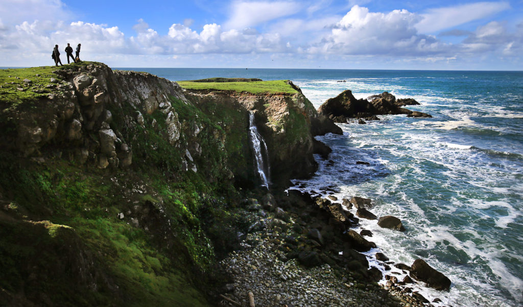 Saving the Sonoma Coast: How Environmentalists Fought to Protect Our Natural Treasure