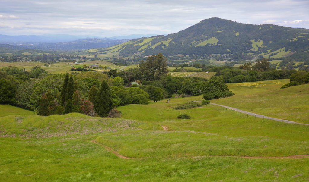 4 Off-the-Beaten-Path Hikes in Sonoma County