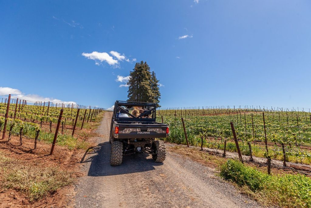 Hold On to Your Glass: ATV Winery Tour Trend Arrives in Sonoma County