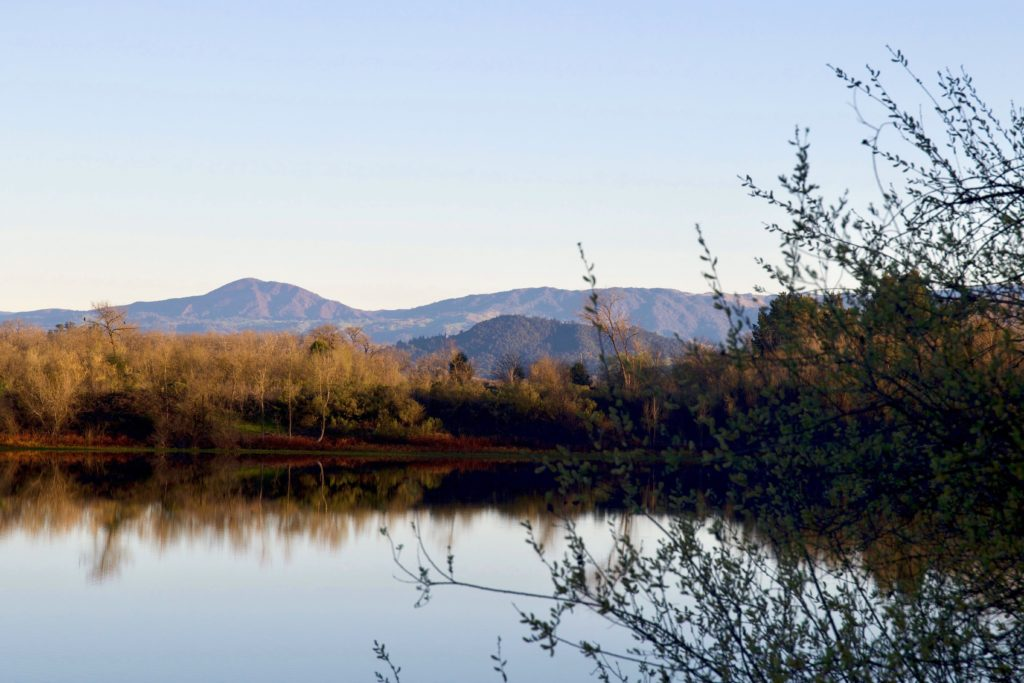Four Favorite Fall Hikes in Sonoma County