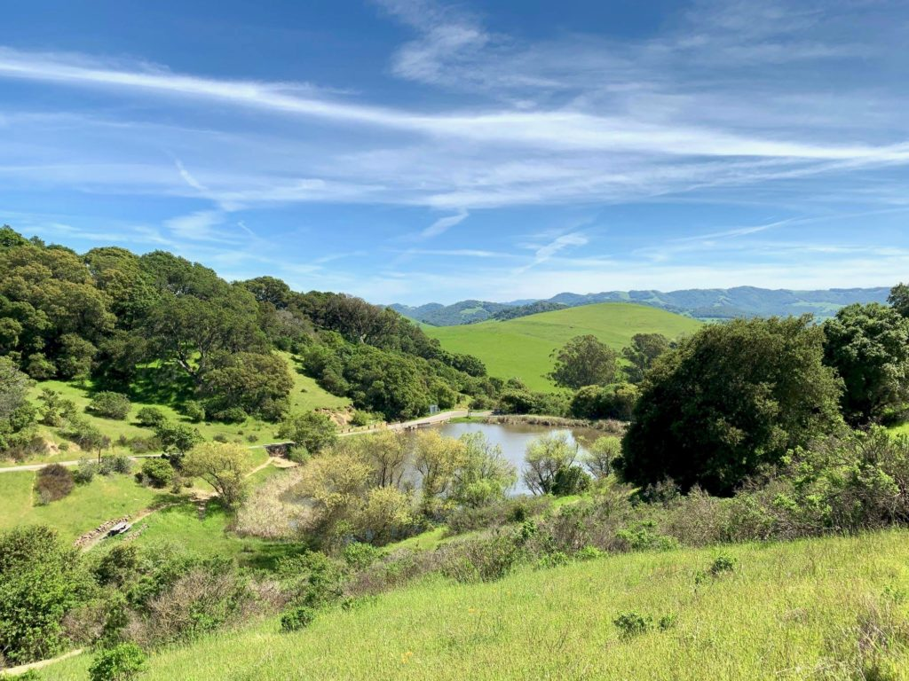 20 Favorite Hikes in Sonoma County