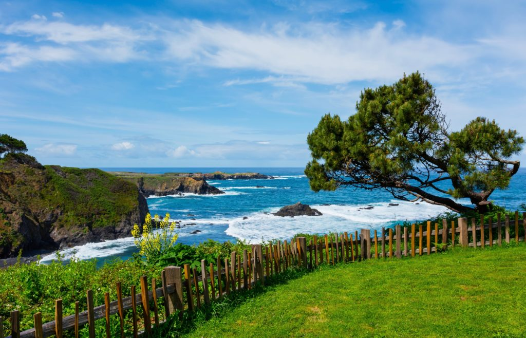 Mendocino Outdoor Guide: 6 Stunning Spots to Visit On Your Next Trip