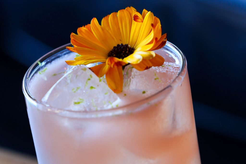 Great Places for Winter Cocktails in Sonoma County