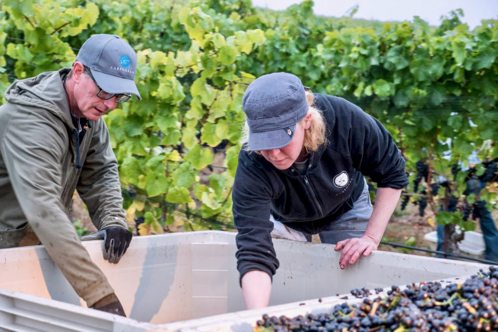 How to Support Small Sonoma Wineries During the Coronavirus Pandemic