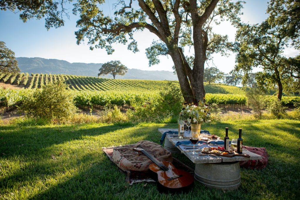10 Sonoma Wineries to Visit This Spring