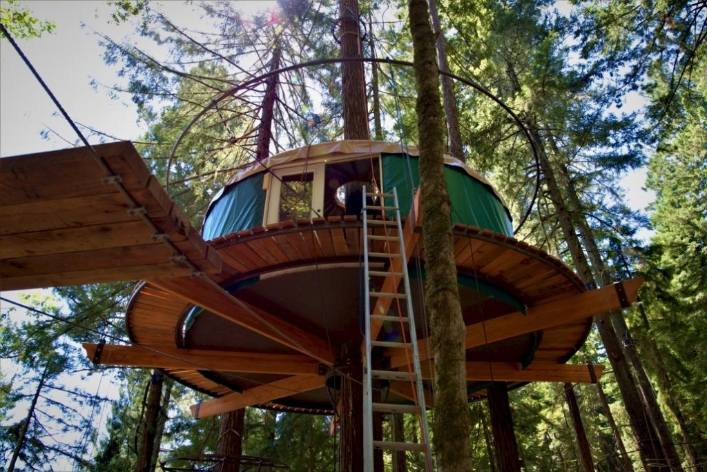 Stay in a Sonoma Treehouse, Far Away From the Crowds