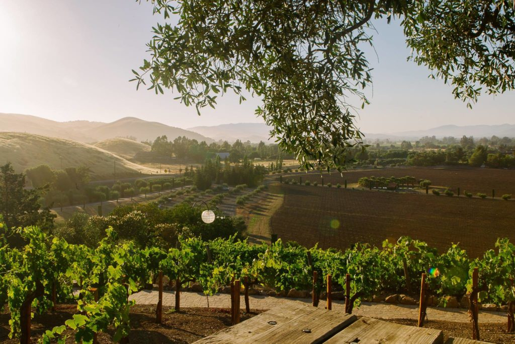 Sonoma County Spots That Will Make You Feel Like You're in Italy