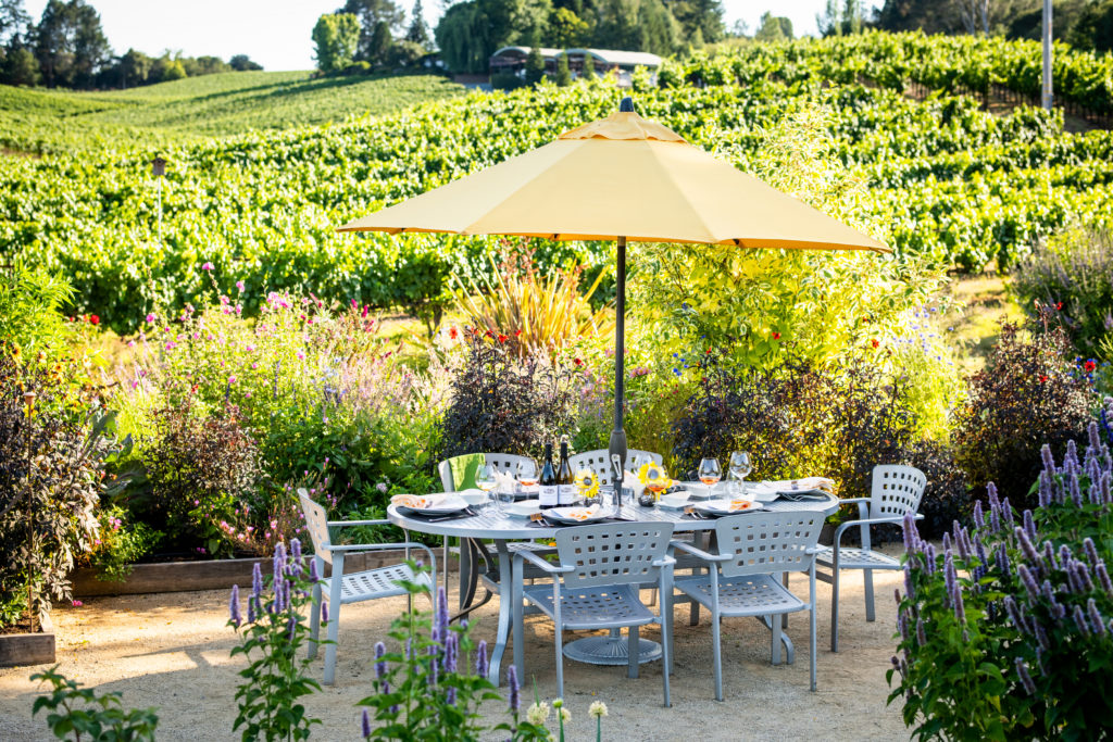 6 Sonoma Wineries for an Authentic Harvest Experience