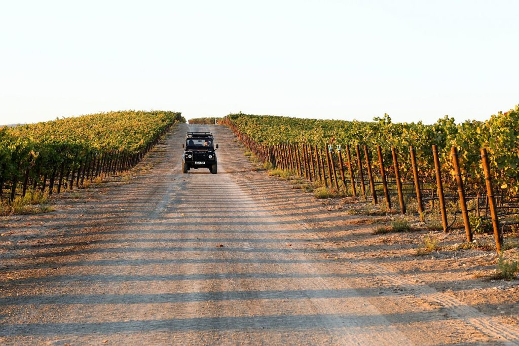 8 Unique Private Tours in Sonoma County to Have on Your Radar