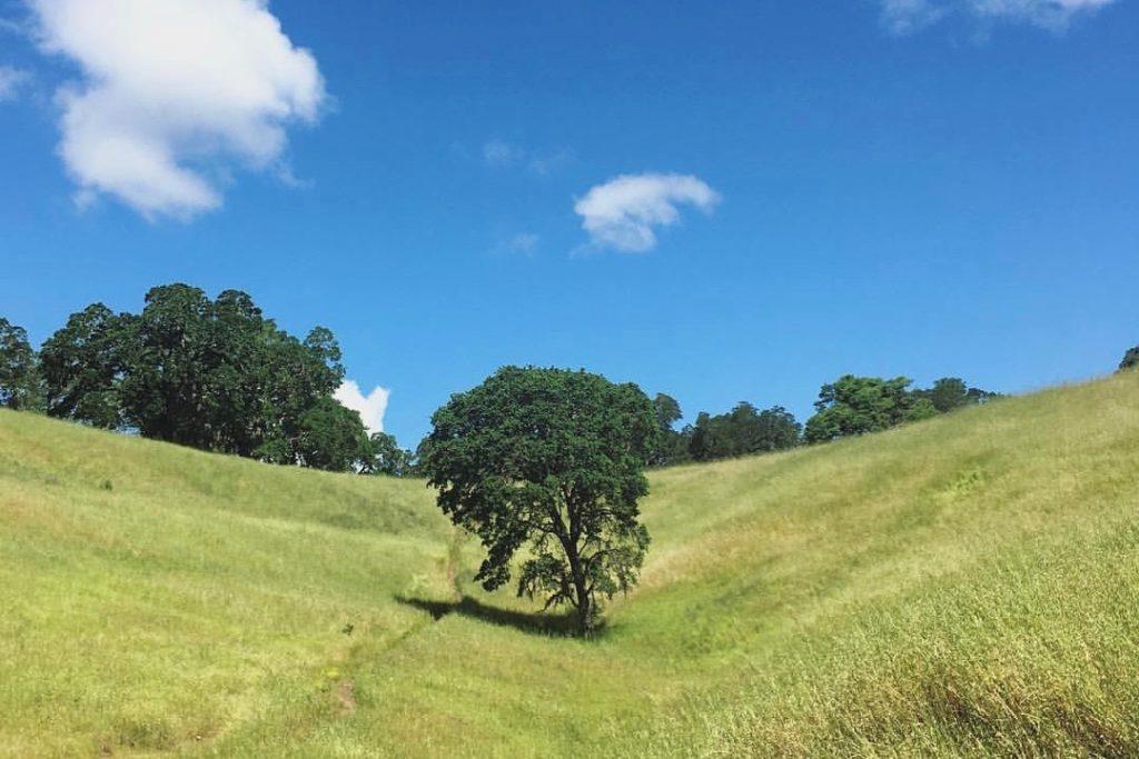 4 Glorious Sonoma Valley Hikes