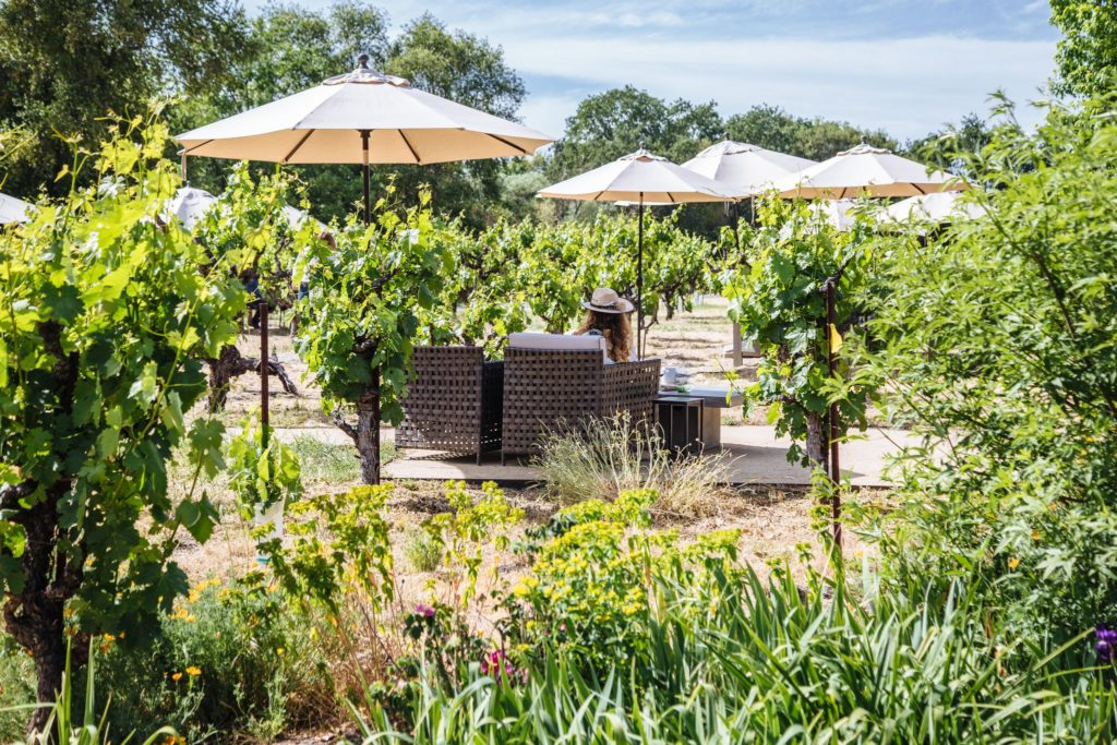 5 New Tasting Rooms to Visit in Sonoma County