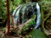Stunning Waterfalls to Visit in Sonoma, Marin and Mendocino